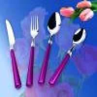 cutlery set plastic handle Manufacturer