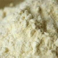 Sweet Buttermilk Powder Manufacturer