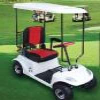 electric golf cartDSGF02 Manufacturer