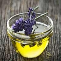 Lavandula Origin Herbal Oil Manufacturer