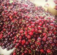 Organic Cherries Manufacturer