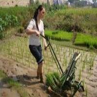 2 Rows Manual Rice Transplanter Manufacturer