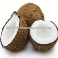 Cheap Fresh Semi husked Brown coconut for sale