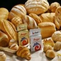 Angel baker yeast high sugar yeast Manufacturer