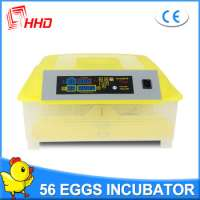 Automatic Poultry Eggs Incubator  Manufacturer