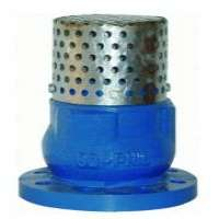 cast iron foot valve Manufacturer