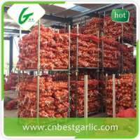 fresh pakistani white onion  Manufacturer