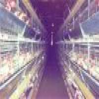 Poultry equipments Manufacturer