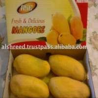 fresh honey mangoes