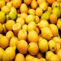 Fresh Lime and Fresh Lemon  Manufacturer