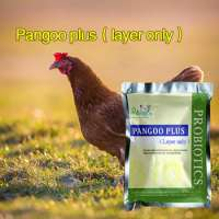 poultry chicken probiotics feed ingredient