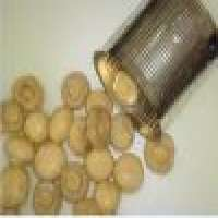 Canned food canned mixed mushroom Manufacturer