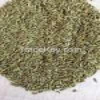 Cumin seed Manufacturer