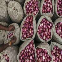 Fresh Red Onion Manufacturer