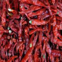 Dry Chilli Spices