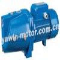 selfpriming jet pump Manufacturer