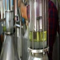 rose oil Manufacturer