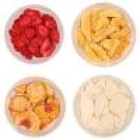 Freeze dried fruits Manufacturer