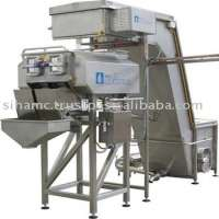 Mozzarella Manufacturer