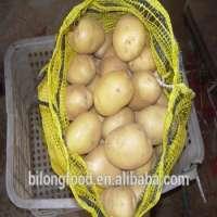Fresh Potato  Manufacturer