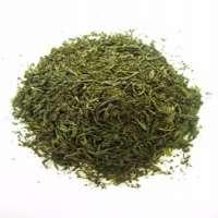Organic Jeju Green Tea  Manufacturer
