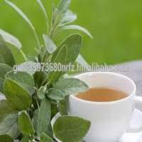 Oil colds adding eucalyptus and many specialized herbs Manufacturer