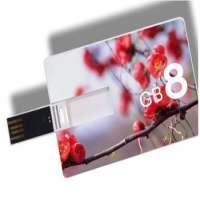Business Credit Card usb flash drive Pen Memory Stick  Manufacturer