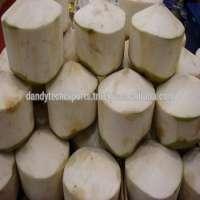 Half Cut Coconut