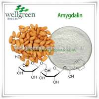 natural amygdalin/bitter almond seed extract/natural bitter almond extract