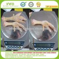 Frozen Chicken Feet Russia Manufacturer