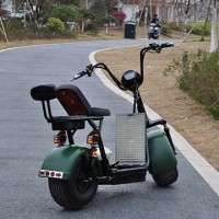 Electrical Scooter  new model Auto Electrical Products