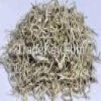 Organic snow tea thamnolia vermicularis Manufacturer