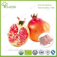 fresh organic pomegranate fruit powder Manufacturer
