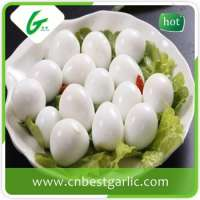 fresh quail eggs Manufacturer