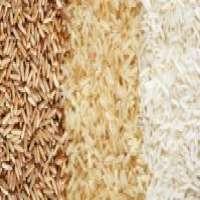 Long Grain White Brown Rice Low  Manufacturer