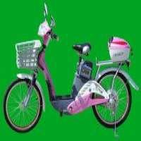 Electric bikesTDL193Z Manufacturer