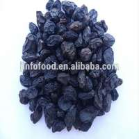 Health food Black or green raisin Manufacturer