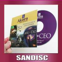 disc maker and mini replication blank cd 800mb to