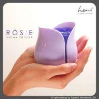2014 Puple Color Essential Oil USB Rose Sharp Aroma Diffuser