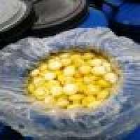 Preserved mushrooms canned foods Manufacturer