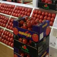 Turkish Tomato