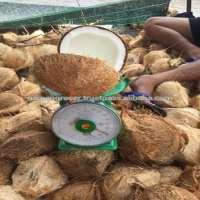 Vietnam Semi husked Coconut