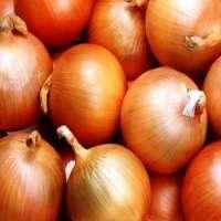 Fresh Asian White Onion