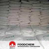 Sodium Caseinate Powder  Manufacturer