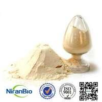 Fat 26 White Powder Non Dairy Cream Manufacturer