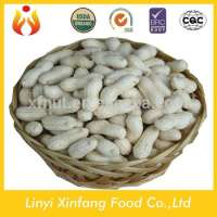peanuts in shell raw organic peanuts ground nut in shell Manufacturer