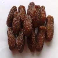 Dry Dates Manufacturer