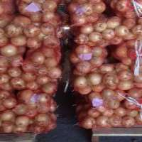 Fresh onion Manufacturer