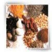 Spices Manufacturer