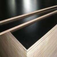 Film face plywood construction plywood Manufacturer